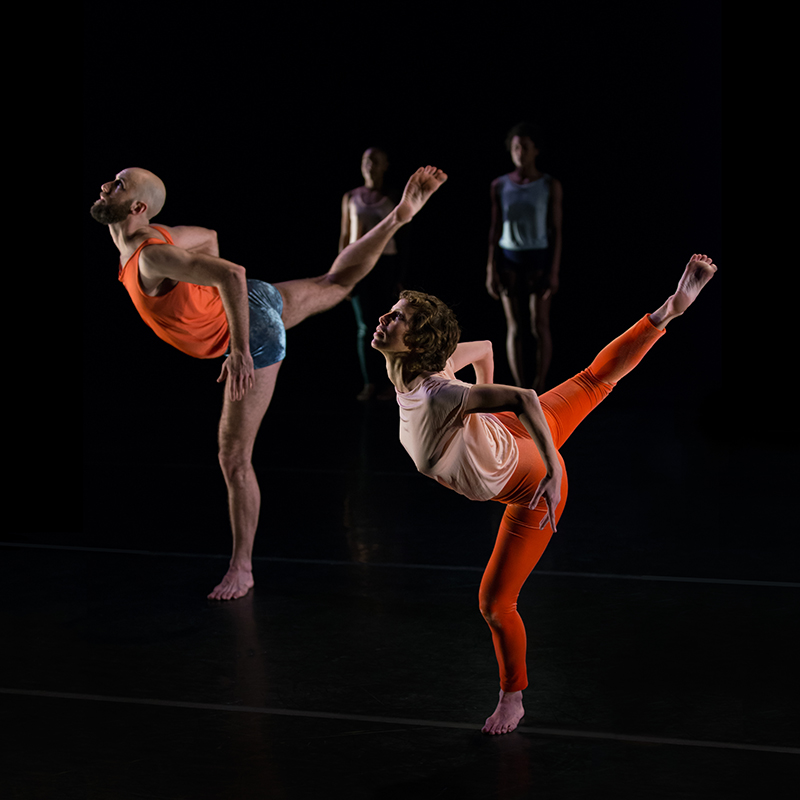 HELEN SIMONEAU DANSE: Land Bridge